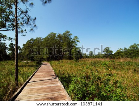 View from south Florida / Wooden Walk