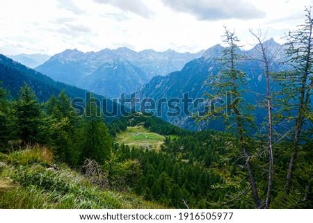 View from the alp Corte della Sassina to the Corte di Mognola alp in the Val Lavizzara, Ticino, Switzerland Foto stock ©