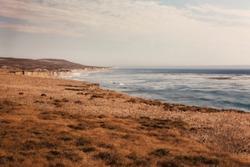 View from the Amtrak Coast Starlight / West Coast of USA passenger train