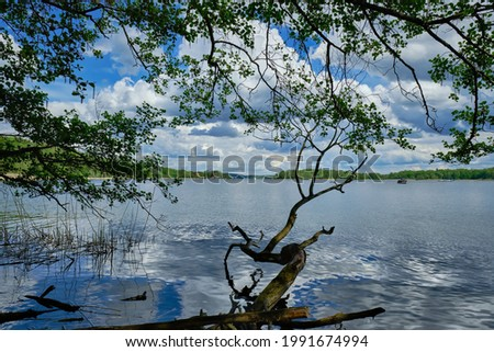 View from the banks of river Havel near 'Kleines Hamphorn' to Berlin-Kladow and the 'Pfaueninsel' ('Peacock Island') Stockfoto ©