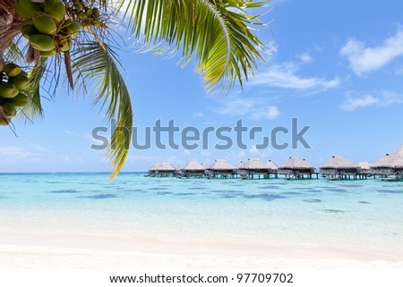 view from the beach at the overwater bungalows