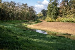 View from the jungle-like Leipzig Riverside Forest with the rivers Weisse Elster and Luppe with wild river landscapes, Germany, Europe