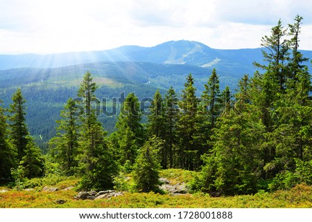 View from the top of mountain Zwercheck on the mount Grosser Arber in the National park Bayerischer Wald. Germany. Stock foto ©