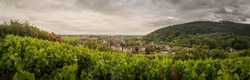 View from the vineyard of Nuits Saint Georges