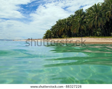 View from the water surface of a sandy beach with tropical vegetation, Caribbean sea, Panama