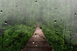 View from the window Suspension bridge behind the glass, rain, tropical downpour