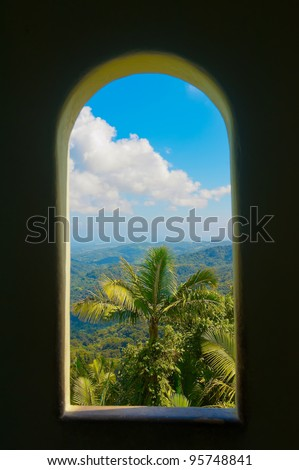 View from tower in El Yunque rain forest