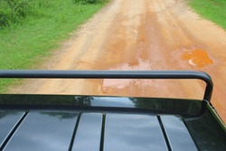 View from 4x4 safari jeep, driving offroad on dirt road in national park, searching for wild animals and wildlife. Explore the world concept