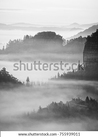 View into deep misty valley in Saxony Switzerland, Germany. Sandstone peaks and rocky hills sticking up from thick fog. Black and white picture.  #755939011