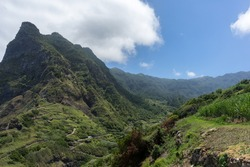 View into forested mountain valley with steep cliffs and blue sky on Madeira Island
