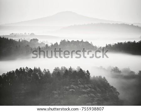 View into misty valley. High trees and rocky peaks increased from thick fog.  The first sun rays create sharp outlines in mist.  #755938807