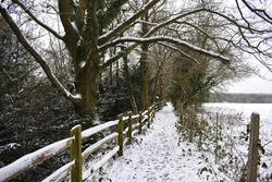 View looking down a side path of the Worth Way near the village of Crawley Down in West Sussex, England, UK. Snowy footprints cover the path with snow covered tree branches and wooden fencing.