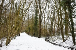 View looking down the snow covered Worth Way near the village of Crawley Down in West Sussex, England, UK. The bridle path passes through rows of trees running beside a stream on a cold winter day.