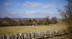 View looking north across Nidderdale