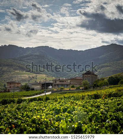View near Le Perreon n France Foto stock ©