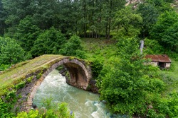 View of a arch bridge of highland, Giresun - Turkey