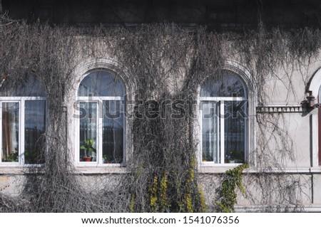 View of a beautiful house exterior.Exterior facade windows. #1541076356