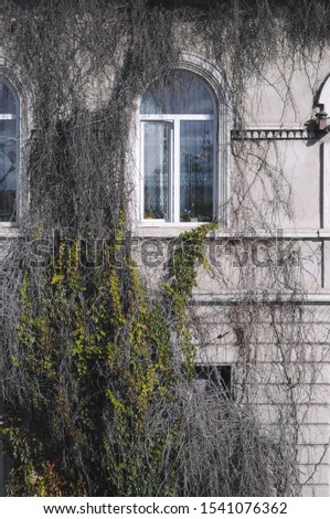 View of a beautiful house exterior.Exterior facade windows. #1541076362