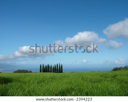 View of a bright green meadow with valley and ocean and mountain in the background