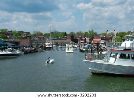 View of a busy Annapolis harbor, home of U. S. Naval Academy