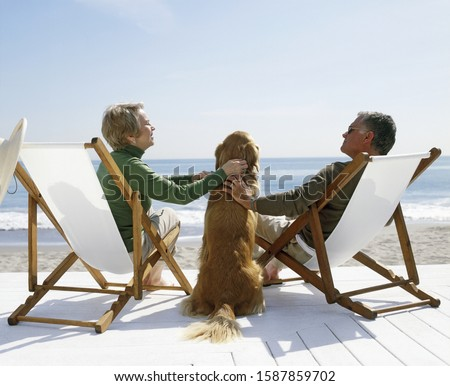 View of a couple petting golden retriever as they sit in lawn chairs on the beach