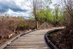View of a curved boardwalk in a marshland on a cloudy, overcast day in the pacific northwest