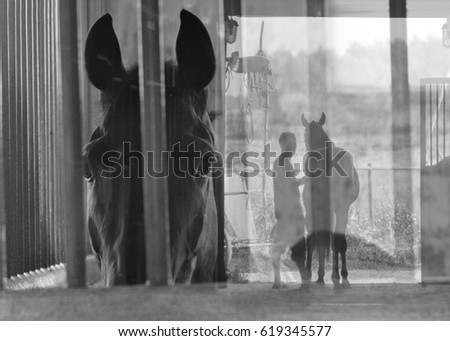 View of a horse and a man with a horse in art, multiexposition. Black and white #619345577