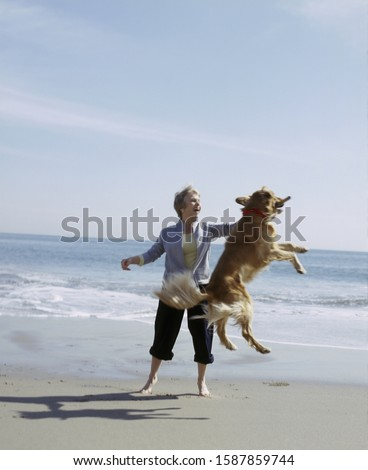 View of a middle aged woman playing with golden retriever on the beach