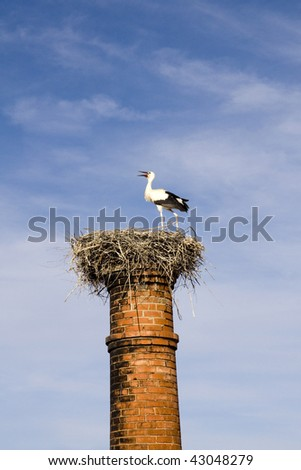 View of a nest with a stork on top of an abandoned factory chimney.