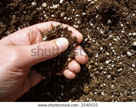 View of a person\'s hand checking the soil before planting.