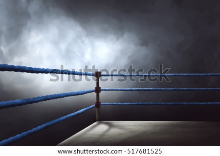 view of a regular boxing ring...