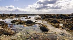 View of a tidal pool, Looe Bay, West Looe, Cornwall, England, UK