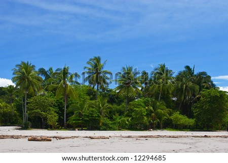 View of a Tropical beach in Manuel Antonio, Costa Rica.