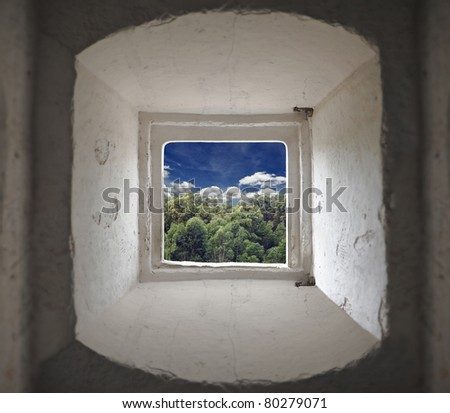 View of a tropical forest with a cloudy blue sky through the bay window of a medieval fort.