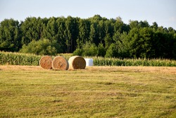 View of a vast meadow, pastureland or field with some hay bales located next to its edge, close to some remaining crops and a vast forest or moor seen on a sunny summer day on a Polish countryside