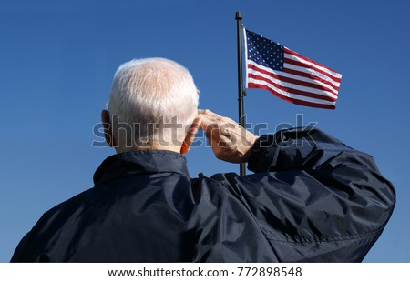 View of a veteran saluting the flag of the United States. #772898548