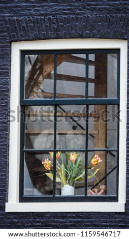 View of a window with flowers and stairs in Amsterdam, Holland