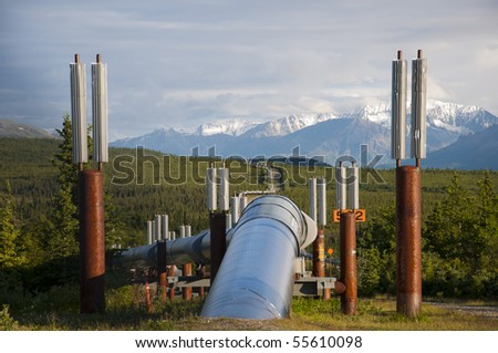 View of Alaska pipeline leaving ground and running into horizon.  Taken in June, facing south along the Richardson Highway between Glennallen, AK and Fairbanks, AK.