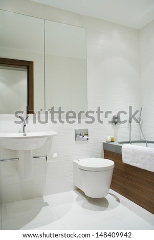 View of an elegant bathroom