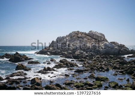 View of an interesting large rock on the ocean shore where sea lions live #1397227616