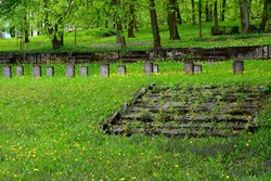View of an old abandoned cemetery full of stone graves covered with shrubs, flowers, grass, and other flora spotted in the middle of a dense forest or moor in spring in a Polish countryside