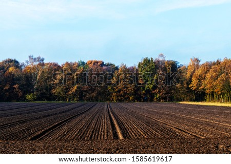 View of arable land near Oosterbeek, Netherlands #1585619617