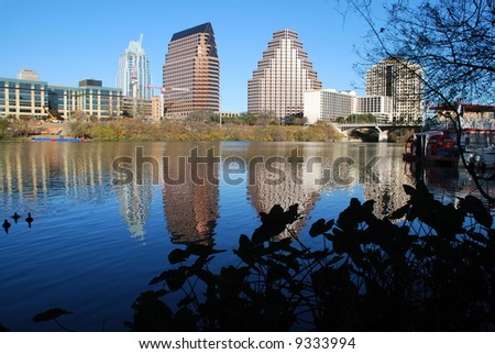 view of Austin, Texas downtown skyline reflected on the beautiful Lady Bird Lake riverboat seen between the branches
