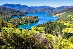 View of bays in Queen Charlotte Sound, Picton, Marlborough region, South Island, New Zealand