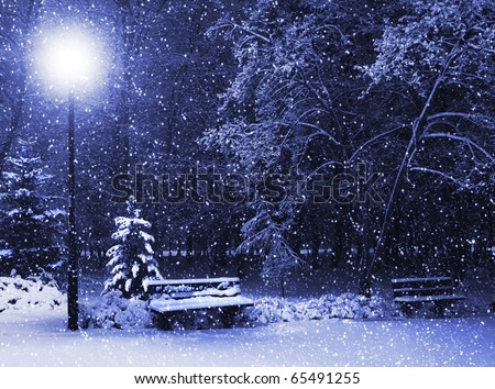View of bench against christmas tree and shining lantern through snowing. Blue tone. Night shot.
