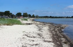 View of Bjert Strand, on a sunny summers day. It is a popular sandy beach near Kolding in Denmark.