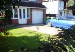 View of blurry front garden, looking through spider web with small brown orb spider hangs in the middle. Space to add text on blurry white webs, green bush trees, driveway, car, house in background