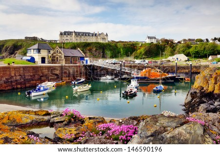 View of boats and a lifeboat in Portpatrick harbour in southwest Scotland,with a foreground of thrift and lichen covered rocks