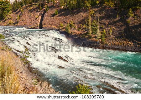 View of Bow Falls flowing through the woodlands of Canada near Banff, Alberta
