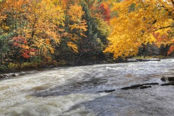 View of Bright foliage and rapids at Algonquin Provincial Park, Canada